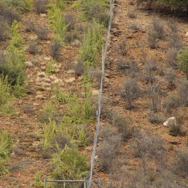 Before and after restoration activities in the Baviaanskloof