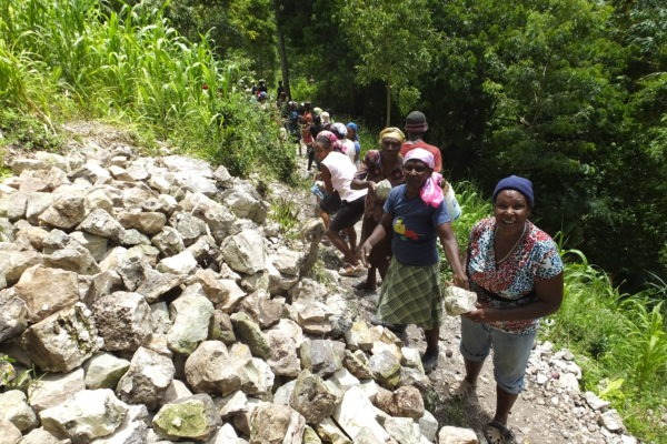 Community working on the check dams
