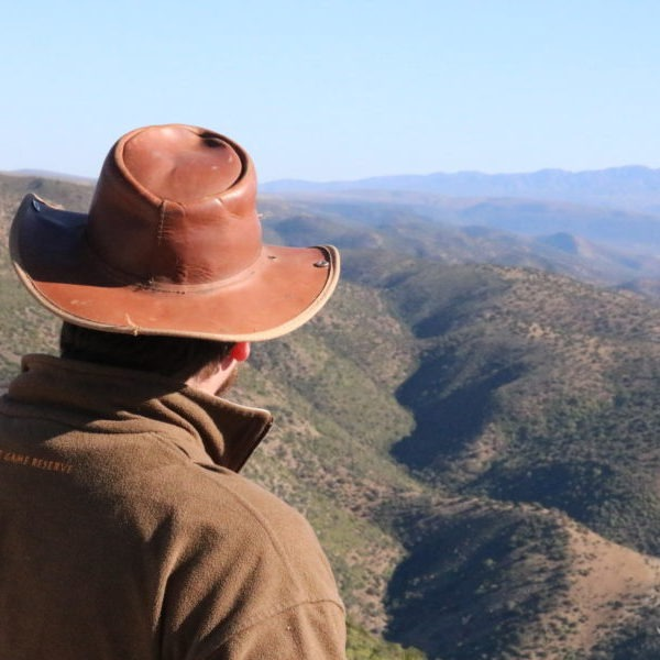 Justin Gird (co-director Living Lands) looks out over the Baviaanskloof landscape