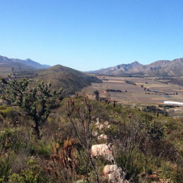 The Langkloof landscape