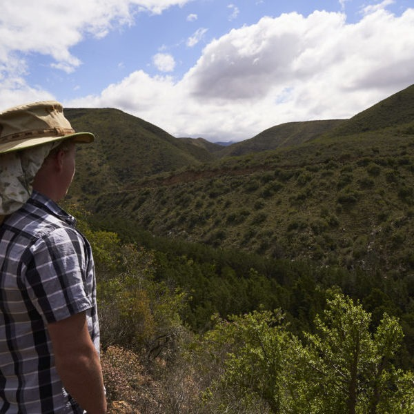 Matt Sephton (landscape mobiliser Living Lands) looking out over the Langkloof natural area