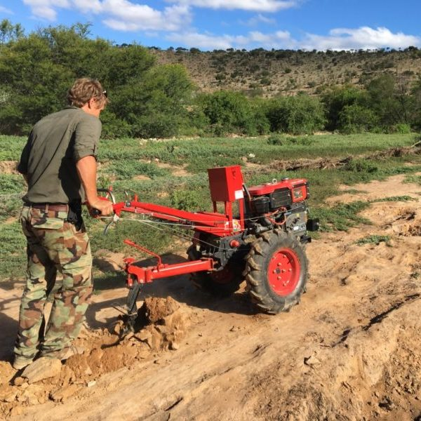 Otto Beukes (landscape innovator) making ponds to capture water