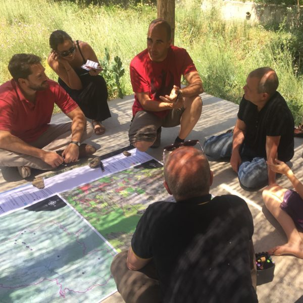 Landscape planning with team