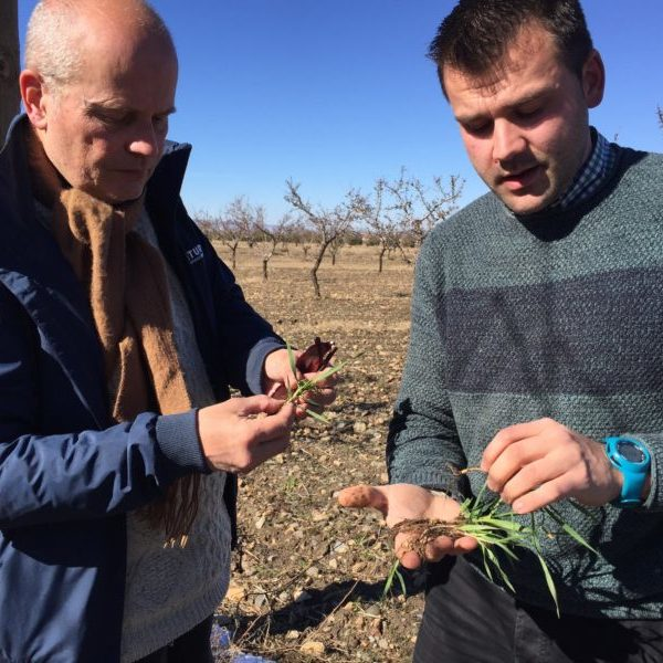 Our CEO Willem Ferwerda and an AlVelAl farmer looking at herbs