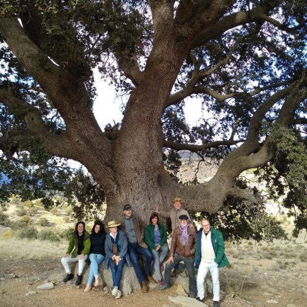 Standing in front of a 700-year old holm oak tree, which inspired a farmer to plant 60,000 oaks trees in the natural zone of the Altiplano