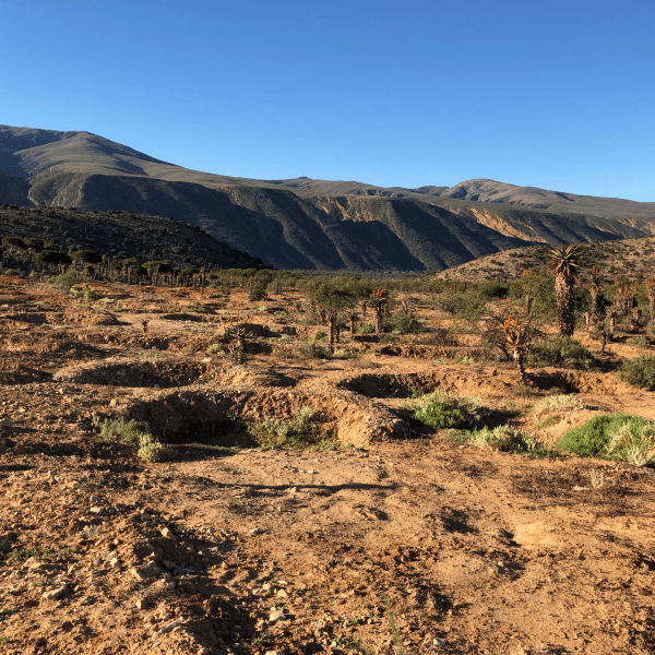Pondings to help retain water in the Baviaanskloof