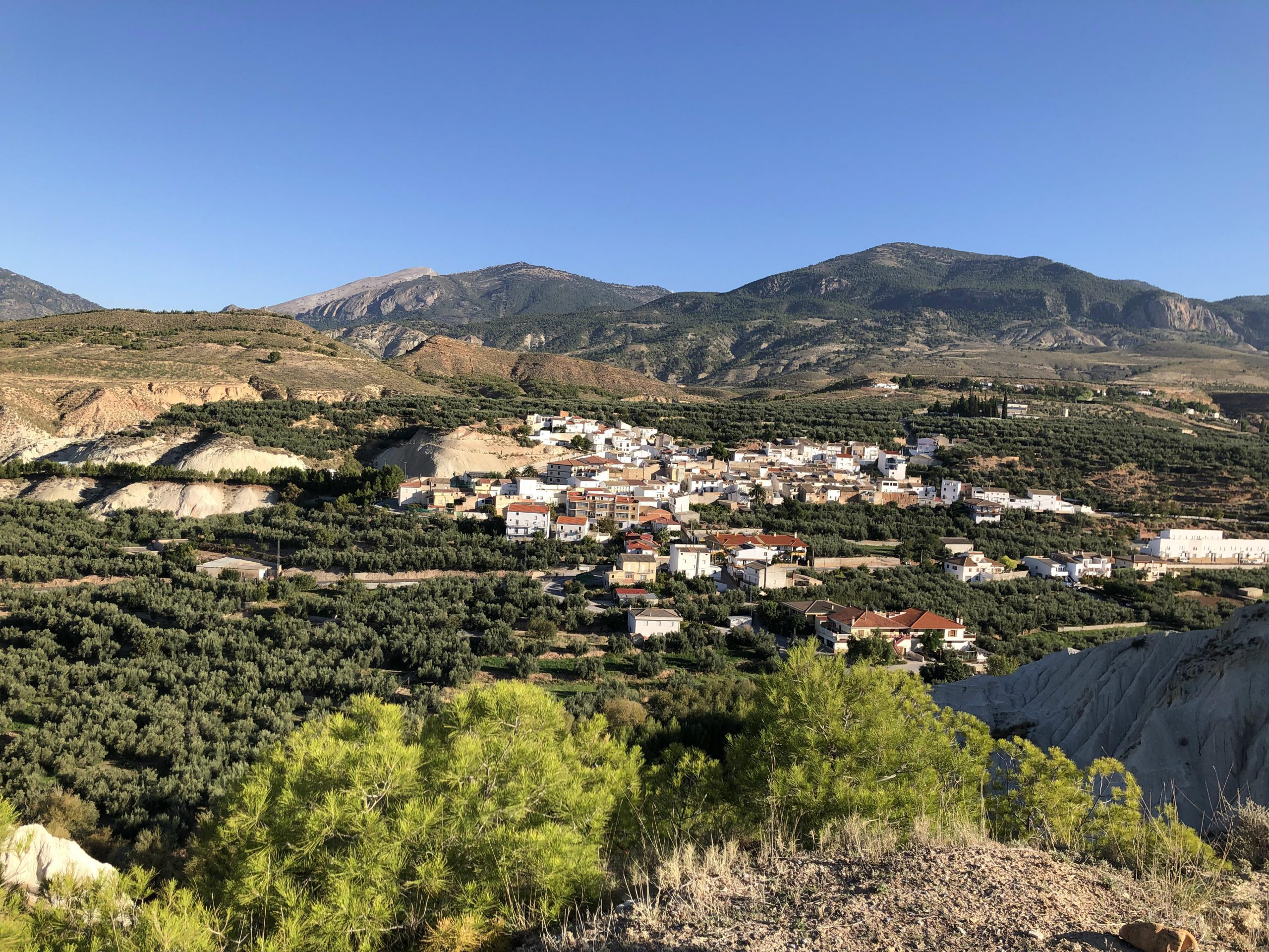 Village in the middle of olive groves and badlands in our Spanish landscape. Photo: Erica ten Broeke.